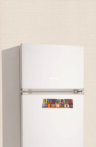 front cover fridge